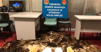 Esenboğa Havalimanında 800 Bin Lira Değerinde Kunduz Postu Ele Geçirildi