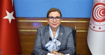 Bakan Pekcan, Avrupa Komisyonu'nun Komşuluk ve Genişlemeden Sorumlu Üyesi Varhelyi ile görüştü